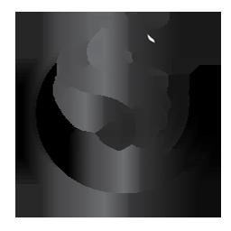 Dragon logo image
